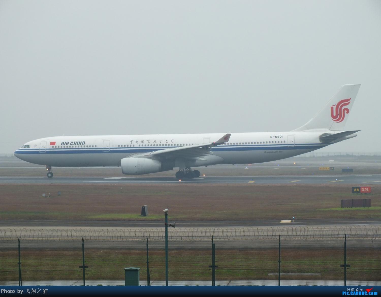 Re:[原创]CKG春运第四辑之精彩的CKG(红蓝凤凰,天合装777,紫宸号,海航二十周年737,共计16班宽体齐聚重庆) AIRBUS A330-300 B-5901 重庆江北国际机场
