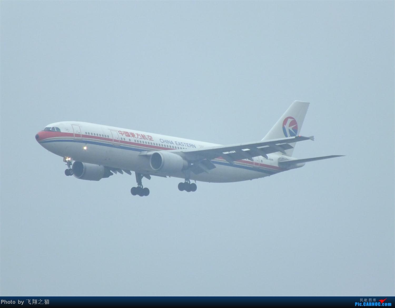 Re:[原创]CKG春运第四辑之精彩的CKG(红蓝凤凰,天合装777,紫宸号,海航二十周年737,共计16班宽体齐聚重庆) AIRBUS A300-B4-600R B-2318 重庆江北国际机场