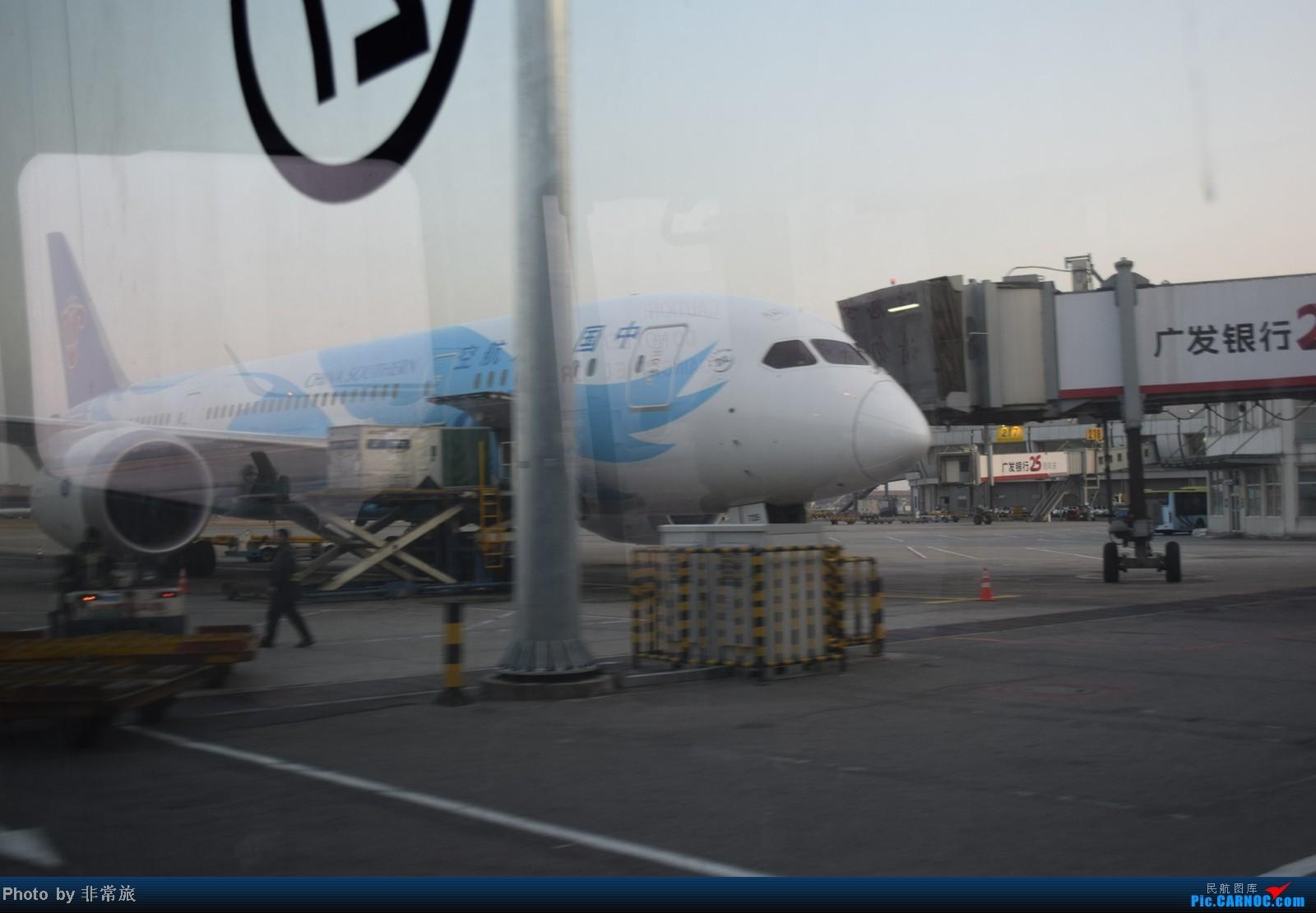 Re:[原创]大年三十除夕夜,三万英尺云霄间。 BOEING 787 B-2725 中国北京首都机场