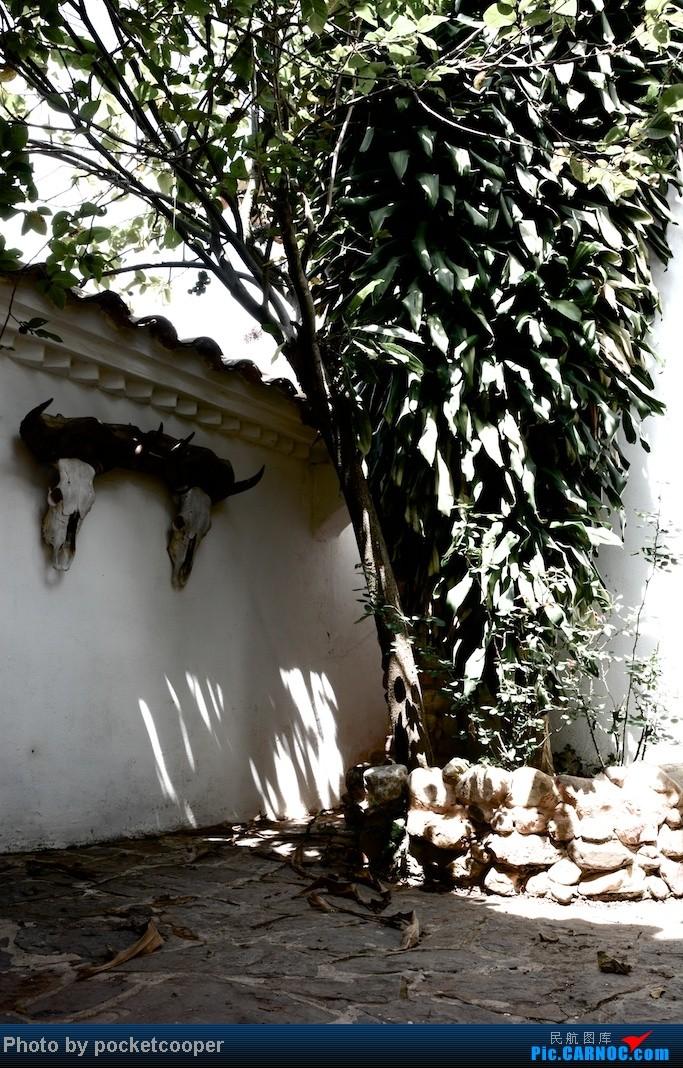 Re:[原创]【日出列传】Avianca 哥伦比亚国内线三段 应广大听众要求开风土人情