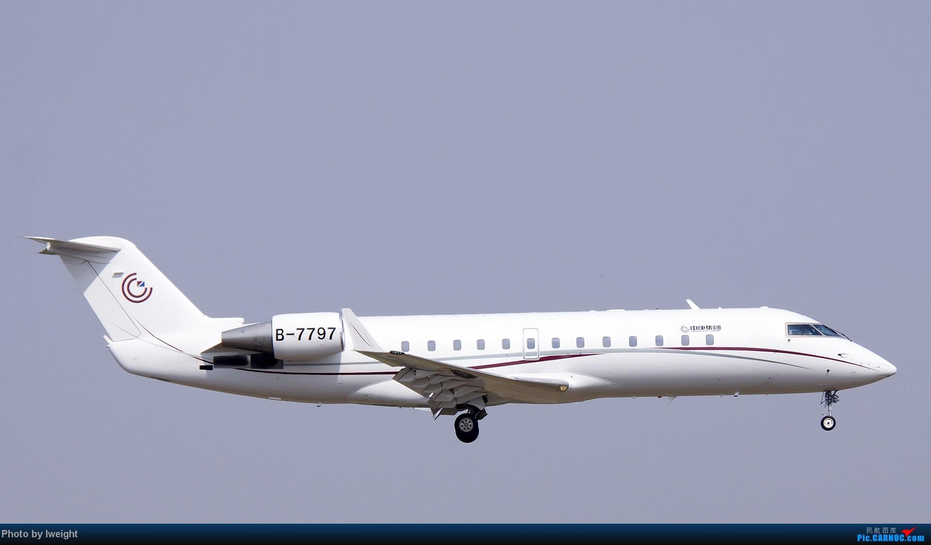 Re:[原创]错过了卡航的巴塞罗那号,只有这些大路货了,泪奔啊 CANADAIR CL-600-2B19 CHALLENGER 850 B-7797 中国北京首都机场