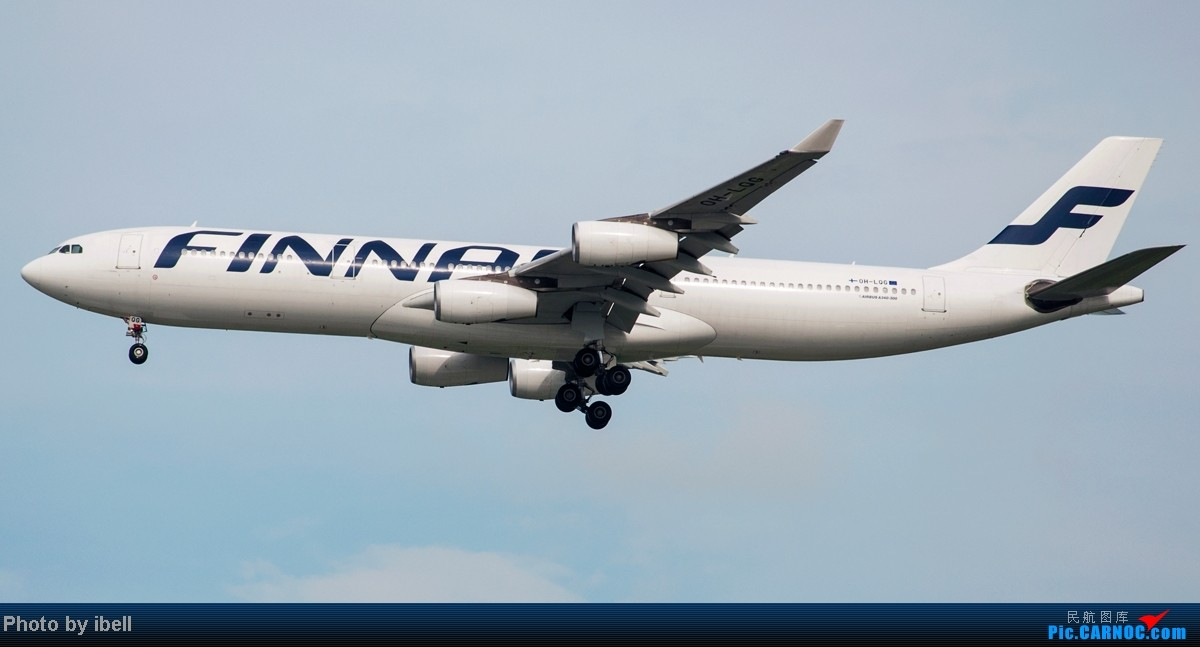 Re:[原创]【SIN樟宜拍机】从ATR到Airbus再到Boeing,包括788,748,更有首都航空! AIRBUS A340-313 OH-LQG 新加坡樟宜机场