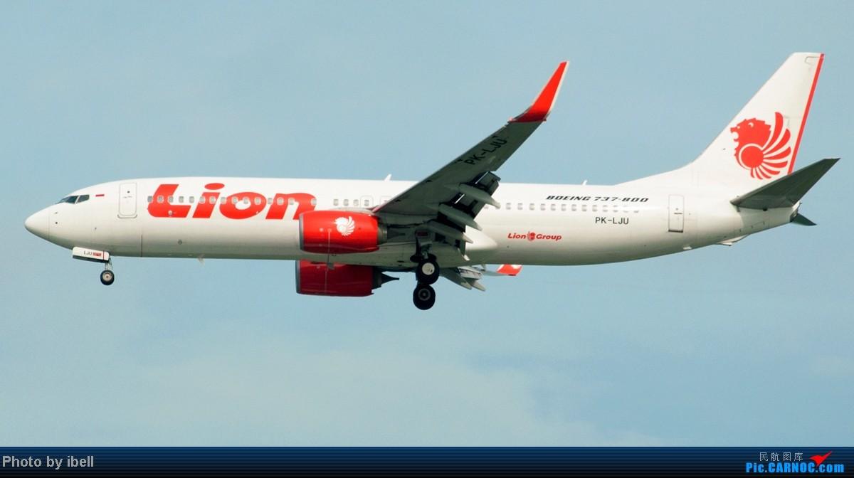 Re:[原创]【SIN樟宜拍机】从ATR到Airbus再到Boeing,包括788,748,更有首都航空! BOEING 737-8GP PK-LJU 新加坡樟宜机场