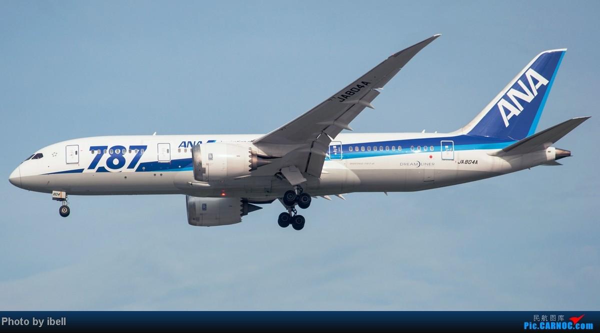 Re:[原创]【SIN樟宜拍机】从ATR到Airbus再到Boeing,包括788,748,更有首都航空! BOEING 787-8 DREAMLINER JA804A 新加坡樟宜机场