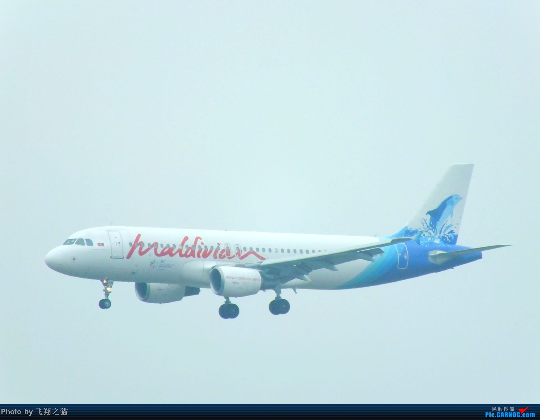 Re:[原创]CKG周末拍机(汉莎MD11F,国航重庆分公司新机1956,英安新舟60)) AIRBUS A320-200 8Q-IAN 重庆江北国际机场