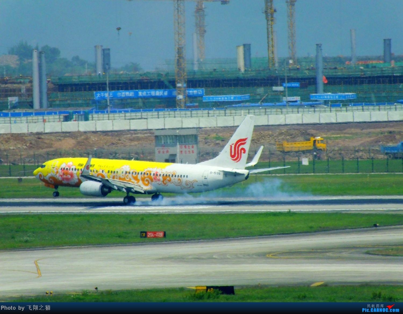 Re:[原创]CKG拍机(五一要到来,劳作在机场,为迎熊猫机,晒掉几层皮} BOEING 737-800 B-5198 重庆江北国际机场
