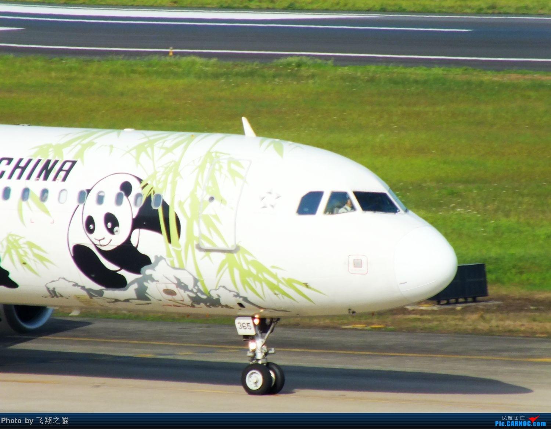 Re:[原创]CKG拍机(五一要到来,劳作在机场,为迎熊猫机,晒掉几层皮} AIRBUS A321 B-6365 重庆江北国际机场
