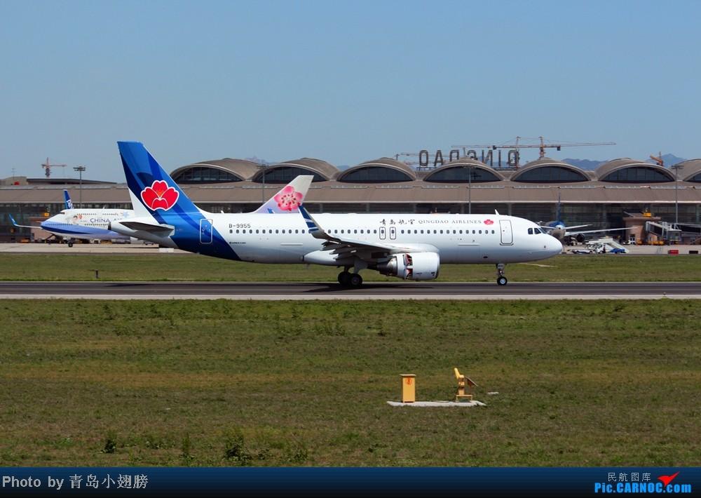 Re:[原创]华航几米彩绘和青岛航空 AIRBUS A320-200 B-9955 中国青岛流亭机场