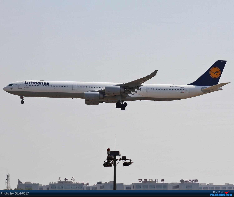 Re:[原创]5月份冒泡发帖~今日大丰收~ AIRBUS A340-600 D-AIHO 中国北京首都机场