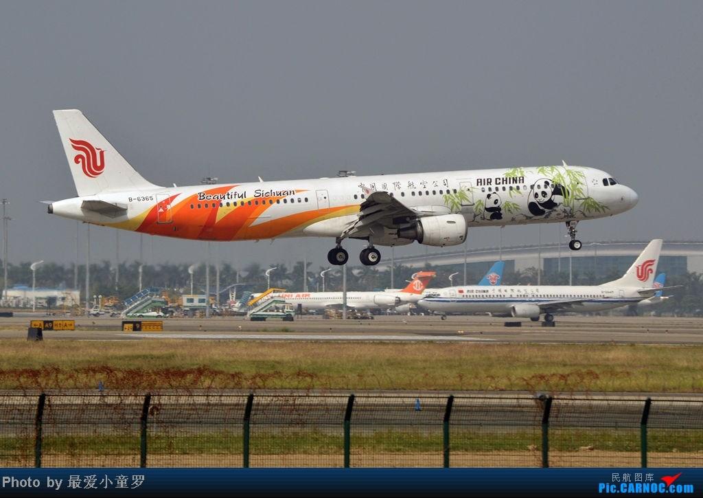 Re:[原创]炒冷饭之最后一次在CAN三炮工地拍机 AIRBUS A321-200 B-6365 中国广州白云机场