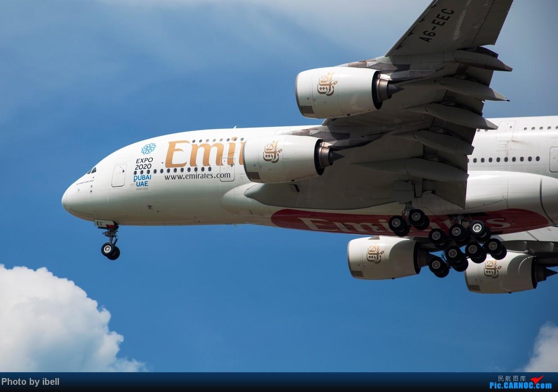 Re:[原创]【SIN樟宜拍机】星航'白星星',沙特阿拉伯,不丹皇家航空,荷兰皇家航空,卖萌的中货航744F。。。 AIRBUS A380-861 A6-EEC 新加坡樟宜机场