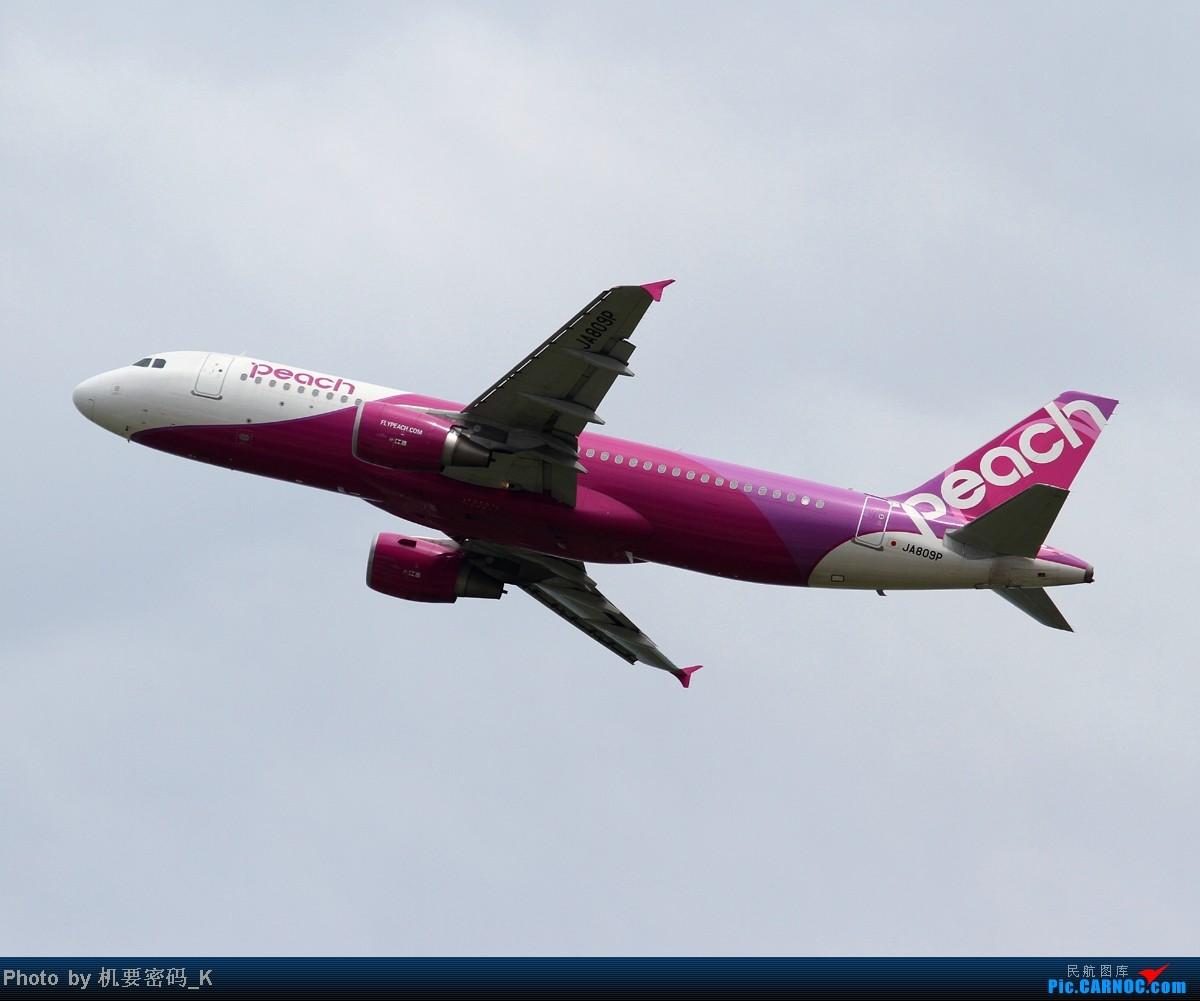 Re:[原创]台北桃园国际机场随拍。那些天我们一起拍过的飞机。 AIRBUS A320-200 JA809P 中国台北桃园机场