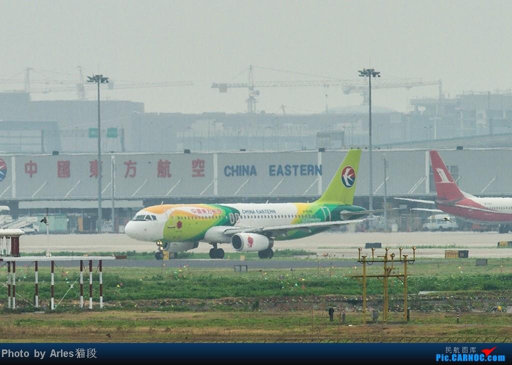 Re:[原创]烂天出好货,SHA拍飞机... AIRBUS A319-100 B-6178 中国上海虹桥机场