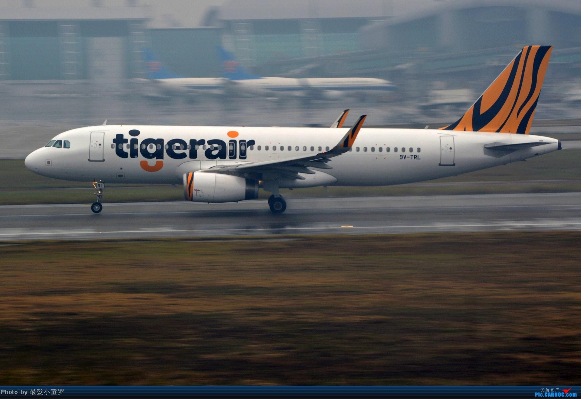 Re:[原创]去年在CAN拍国航757退役时候的那个冷雨周末 AIRBUS A320-200 9V-TRL