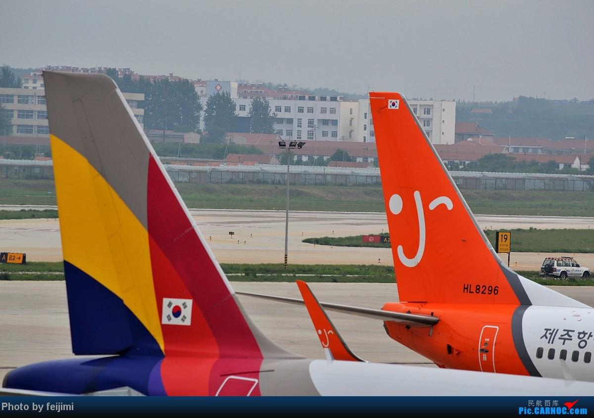 Re:[原创]【子安﹠拍机】最近新开了多条航班,就成就了一组稀罕货 B737-800 HL-8296 中国烟台莱山机场