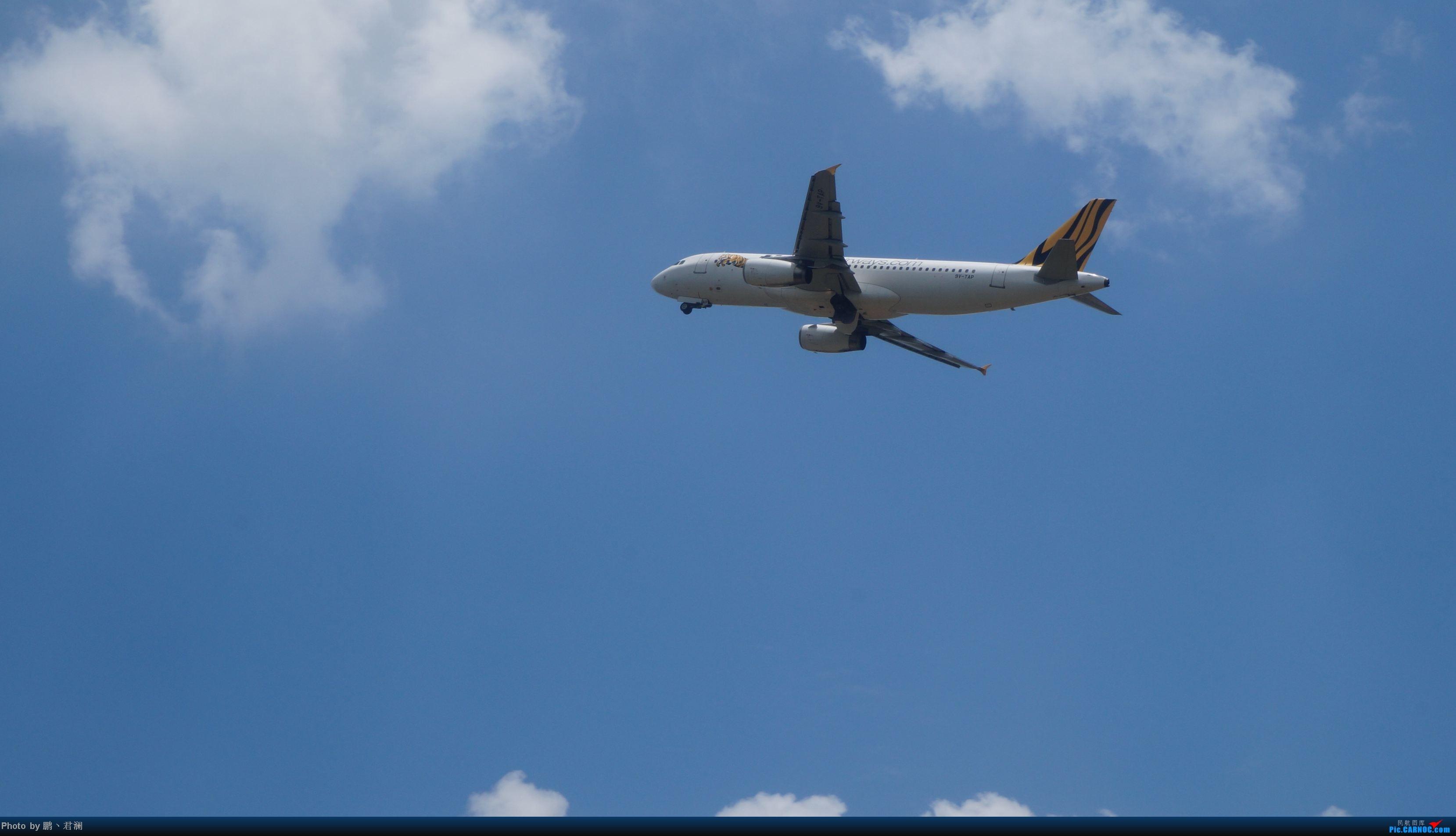 Re:[原创]【海南飞友会】海口炎炎烈日拍机进行时 蓝天+CB+....小微单 AIRBUS A320-200 9V-TAP 中国海口美兰机场