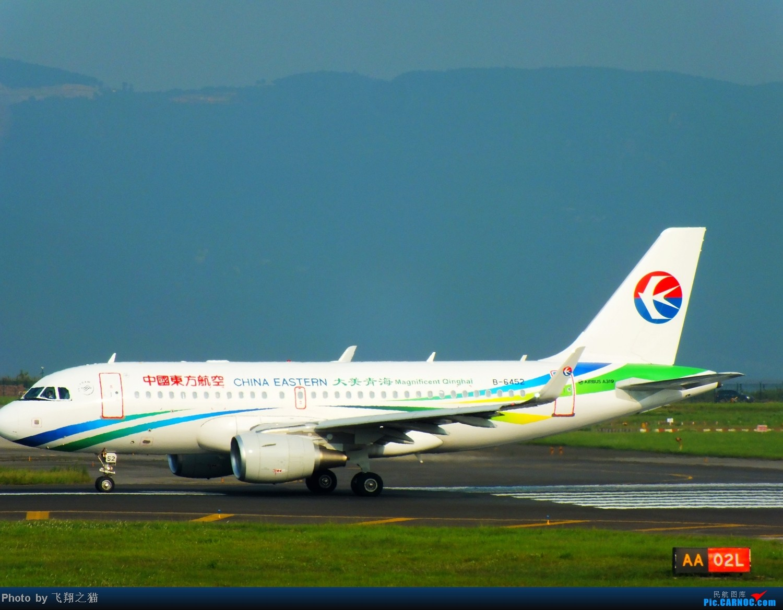 Re:[原创]CKG拍机(国航彩凤凰,汉能G550,南航333复飞) AIRBUS A319 B-6452 重庆江北国际机场