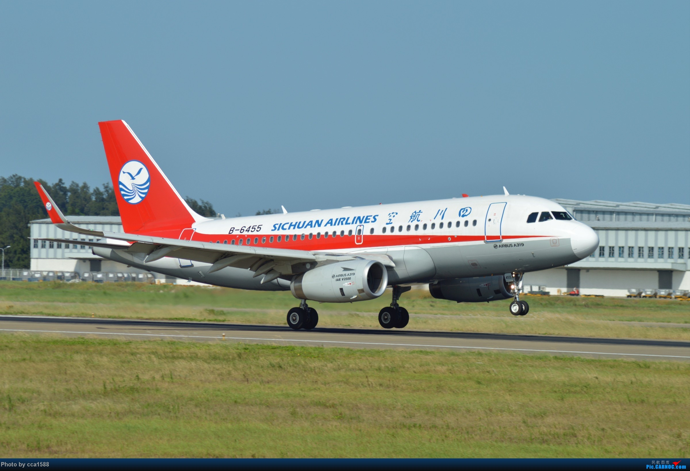 Re:[原创]7.25--FOC拍机集锦~(复兴、新舟60、还有更多惊喜~!) AIRBUS A319-100 B-6455 中国福州长乐机场