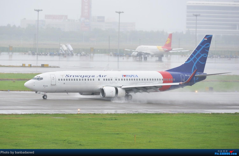 Re:[原创][杭州飞友会]丁丁打飞机——台风天吹水(下) BOEING 737-800  中国杭州萧山机场