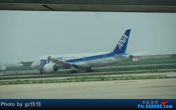 Re:[原创]【小数码拍机】浦东候机随拍 都是小渔村看不到的 这些机型哪家好? BOEING 787-8 JA807A 中国上海浦东机场