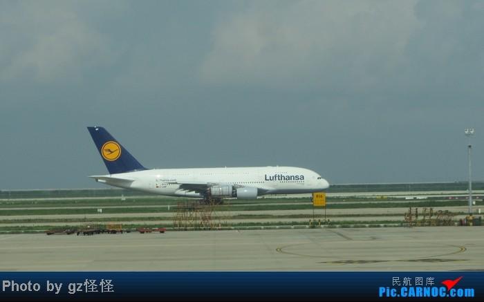 Re:[原创]【小数码拍机】浦东候机随拍 都是小渔村看不到的 这些机型哪家好? AIRBUS A380 D-AIMF 中国上海浦东机场