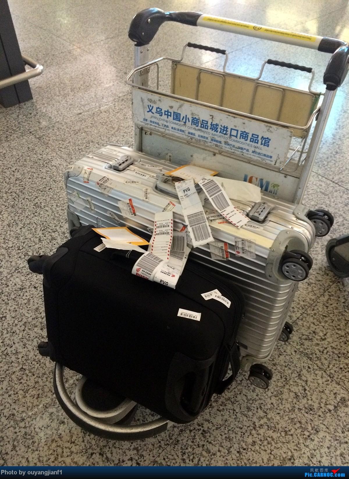Re:[原创]一次真正的说走就走的旅行,一次真正与动物零距离接触的探险,埃塞俄比亚及肯尼亚游记....    中国上海浦东机场