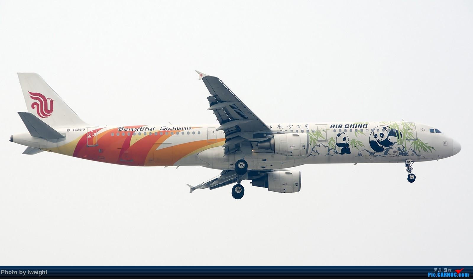 Re:[原创]9月7日帝都的烂天里乱拍一通 AIRBUS A321-200 B-6365 中国北京首都机场