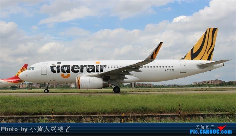 Re:[原创]广州白云拍机 AIRBUS A320 9V-TRI 中国广州白云机场