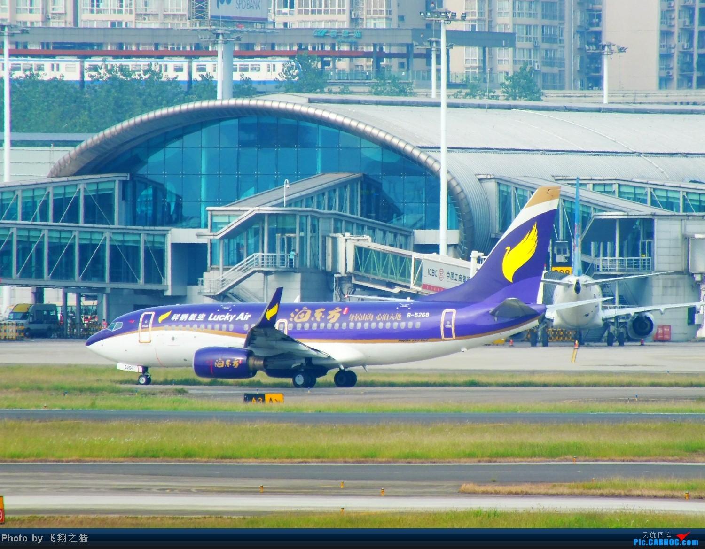 Re:[原创]CKG拍机(再次来到下滑道收获海航国家大剧院彩绘,南航777F,巧遇海东方) BOEING 737-700 B-5268 重庆江北国际机场