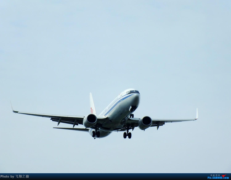 Re:[原创]CKG拍机(再次来到下滑道收获海航国家大剧院彩绘,南航777F,巧遇海东方) BOEING 737-800  重庆江北国际机场