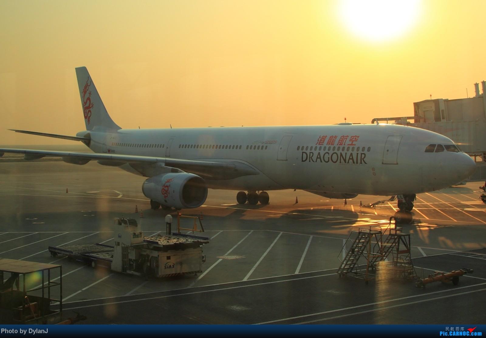Re:[原创]【Feeyo @ XMN】过去一年内的浮光掠影 AIRBUS A330-300 B-HLL 中国上海浦东机场