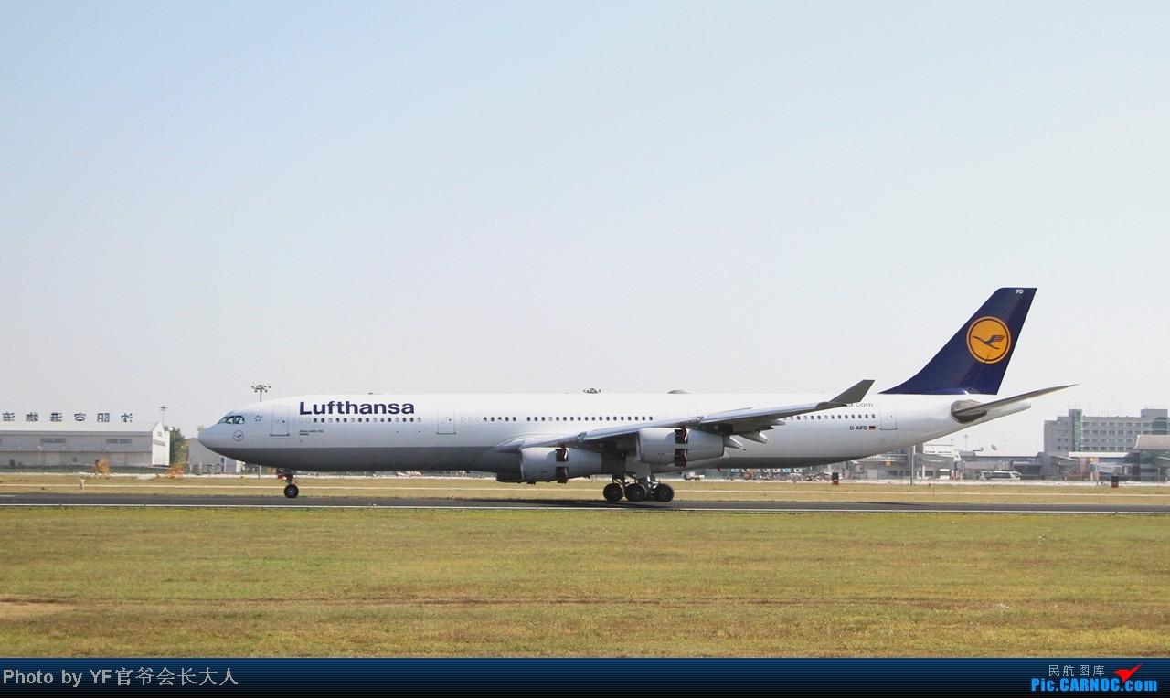 Re:[原创]头一回拍桃仙06起降,全日空737,汉莎343,大运三号 AIRBUS A340-300 D-AIFD 中国沈阳桃仙机场
