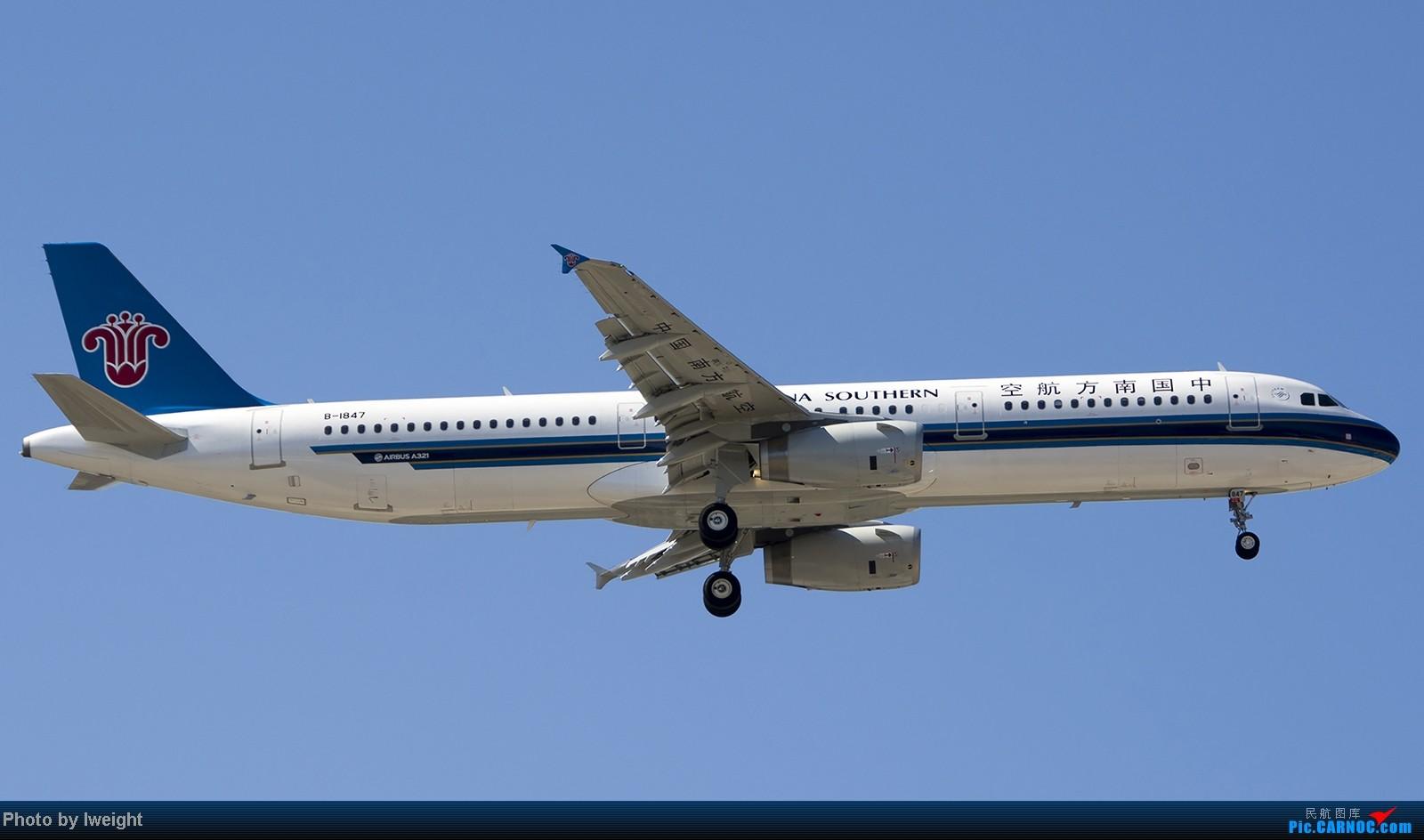 Re:[原创]难得赶上PEK周末好天气,各种常见机型都有收获 AIRBUS A321-200 B-1847 中国北京首都机场