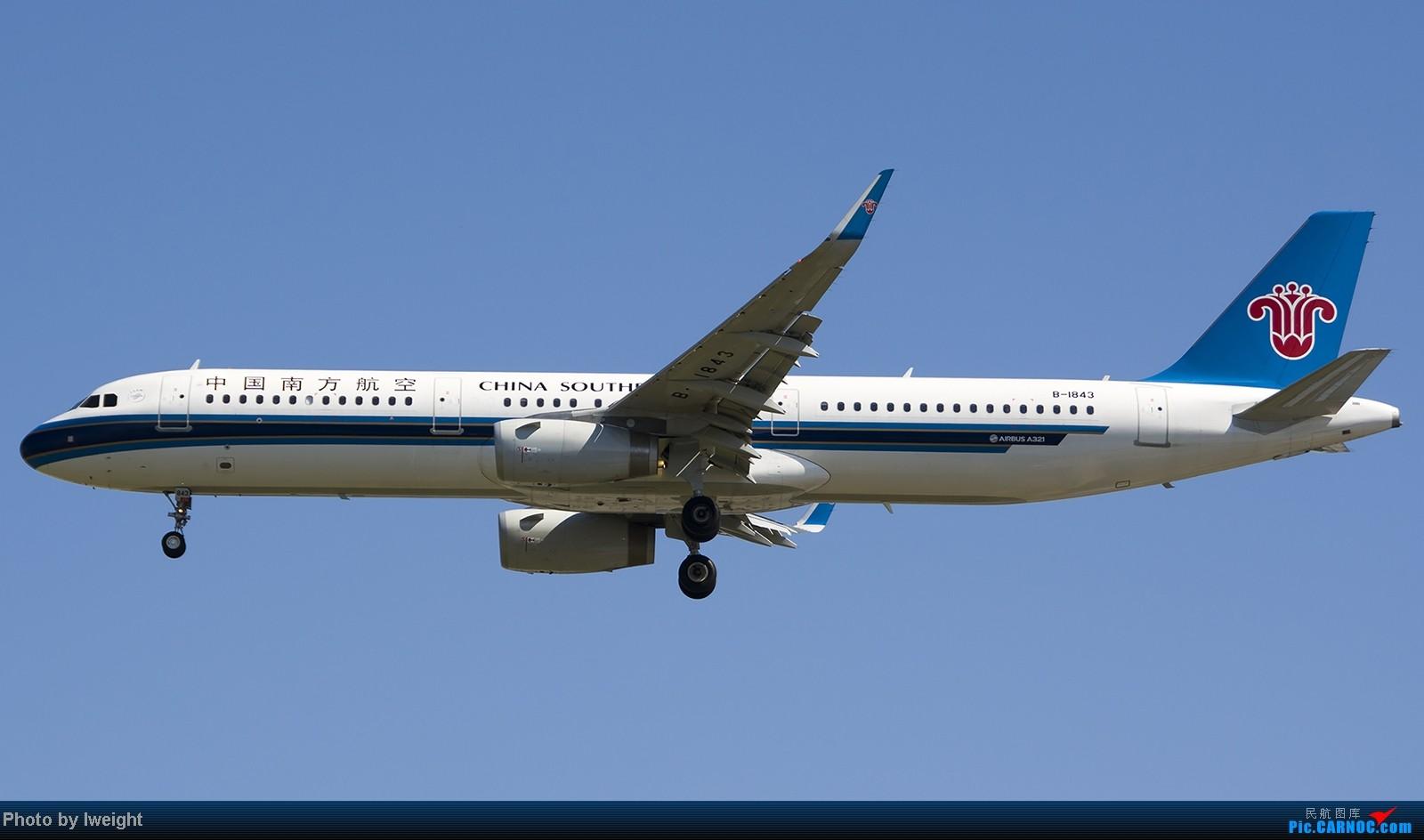 Re:[原创]难得赶上PEK周末好天气,各种常见机型都有收获 AIRBUS A321-200 B-1843 中国北京首都机场
