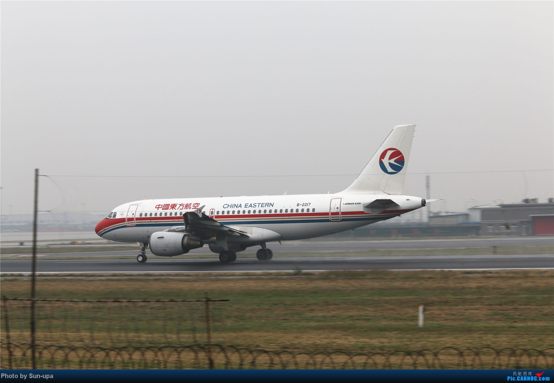 Re:[原创]冷雨天冒着雨拍了一下午 终于等到国航747-8 还有很多好货 AIRBUS A319-100 B-2217 中国北京首都机场