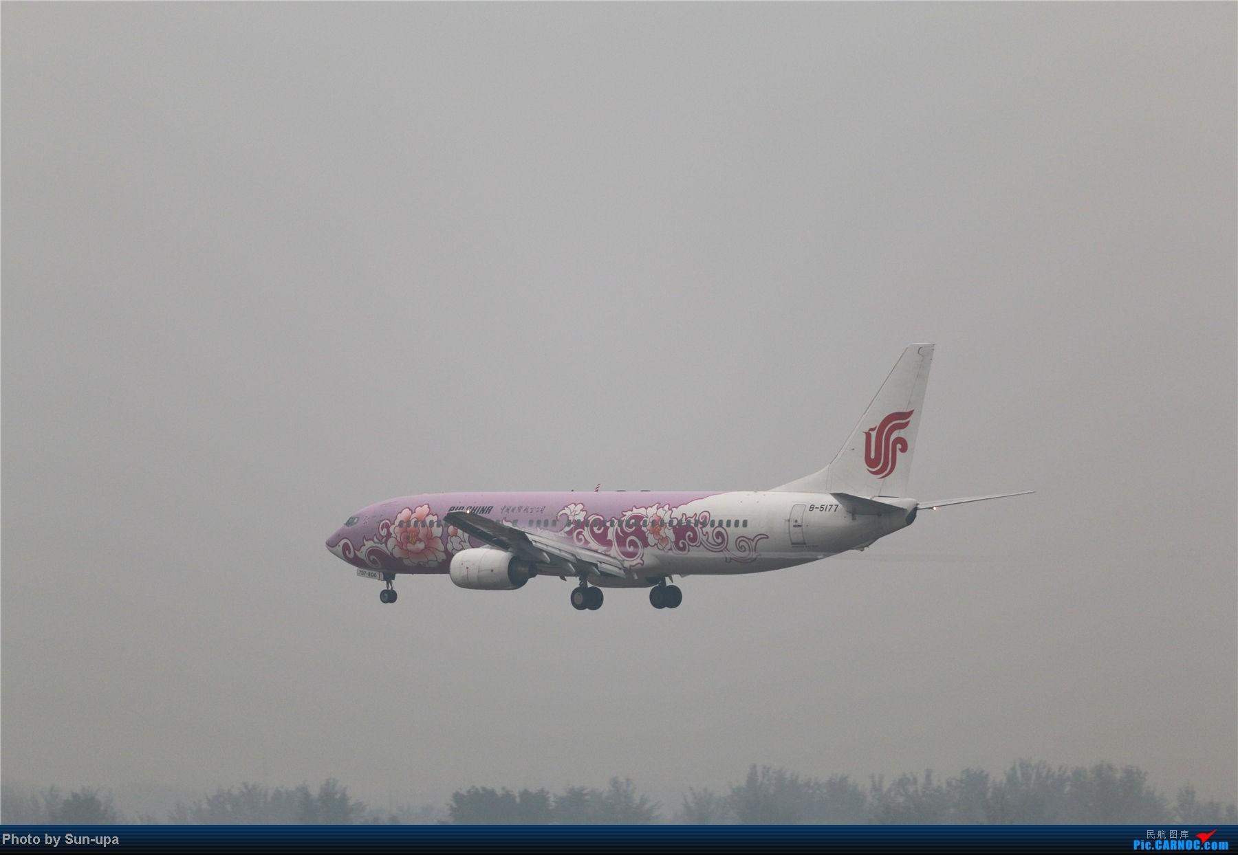 Re:[原创]冷雨天冒着雨拍了一下午 终于等到国航747-8 还有很多好货 BOEING 737-800 B-5177 中国北京首都机场