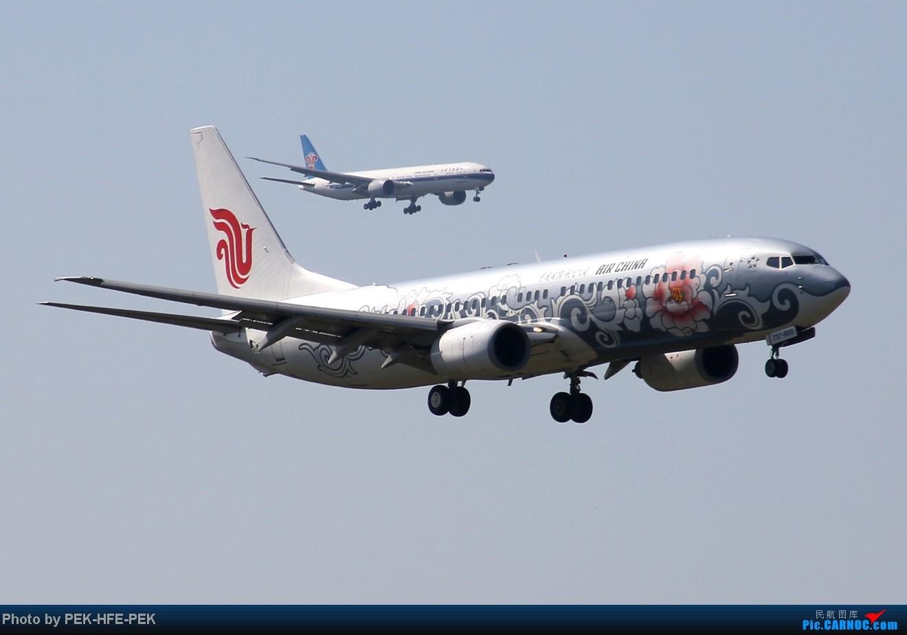 Re:[原创][AutumnKwok]秋高气爽,PEK拍机(西班牙 总 理 专。机,EVA新涂装77W,英航寰宇,蒙古763小姨。。。) BOEING 737-800 B-5177