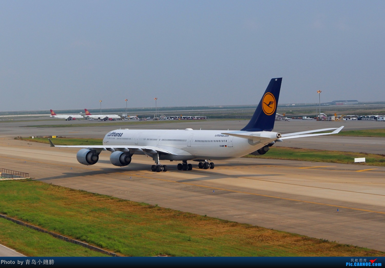 Re:[原创]PVG拍机-各种招手和不招手 AIRBUS A340-600 D-AIHF 中国上海浦东机场