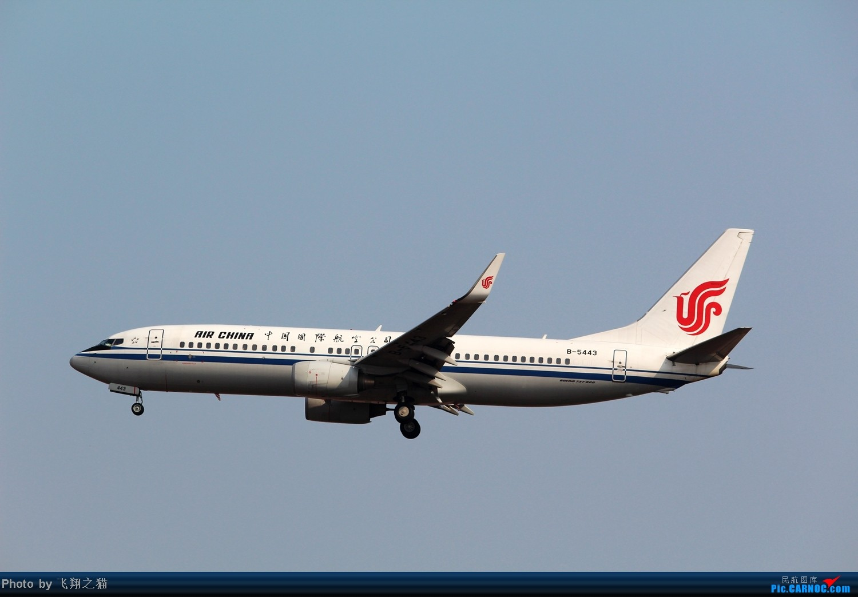 Re:[原创]CKG拍机(02下滑道拍机杂图一大堆) BOEING 737-800 B-5443 重庆江北国际机场