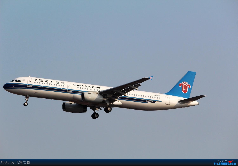 Re:[原创]CKG拍机(02下滑道拍机杂图一大堆) AIRBUS A321 B-1847 重庆江北国际机场