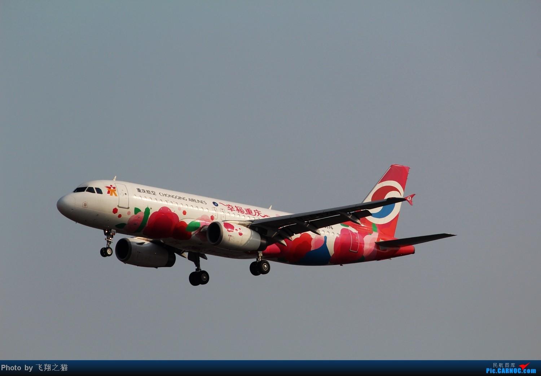 Re:[原创]CKG拍机(02下滑道拍机杂图一大堆) AIRBUS A320-200 B-6576 重庆江北国际机场