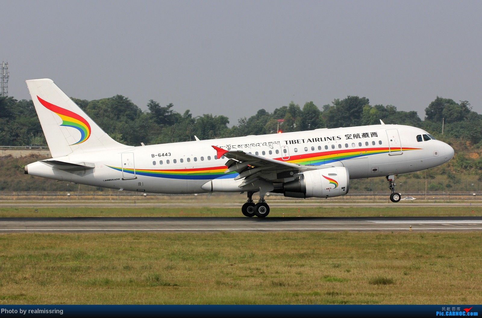 Re:[原创]CARNOC成都空港缘分-国庆6号拍机之02R(小树林) AIRBUS A319-100 B-6443 中国成都双流机场