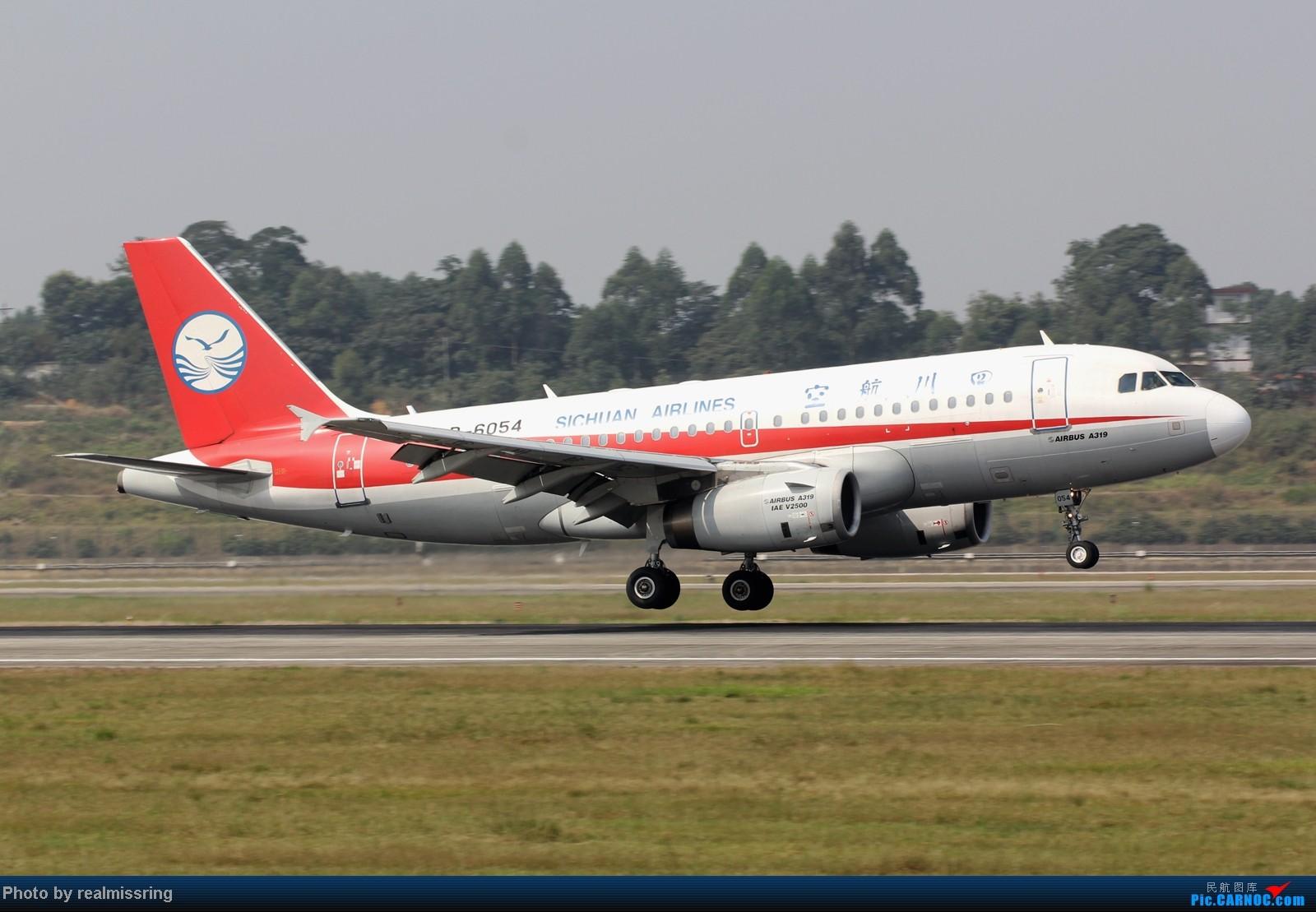 Re:[原创]CARNOC成都空港缘分-国庆6号拍机之02R(小树林) AIRBUS A319-100 B-6054 中国成都双流机场