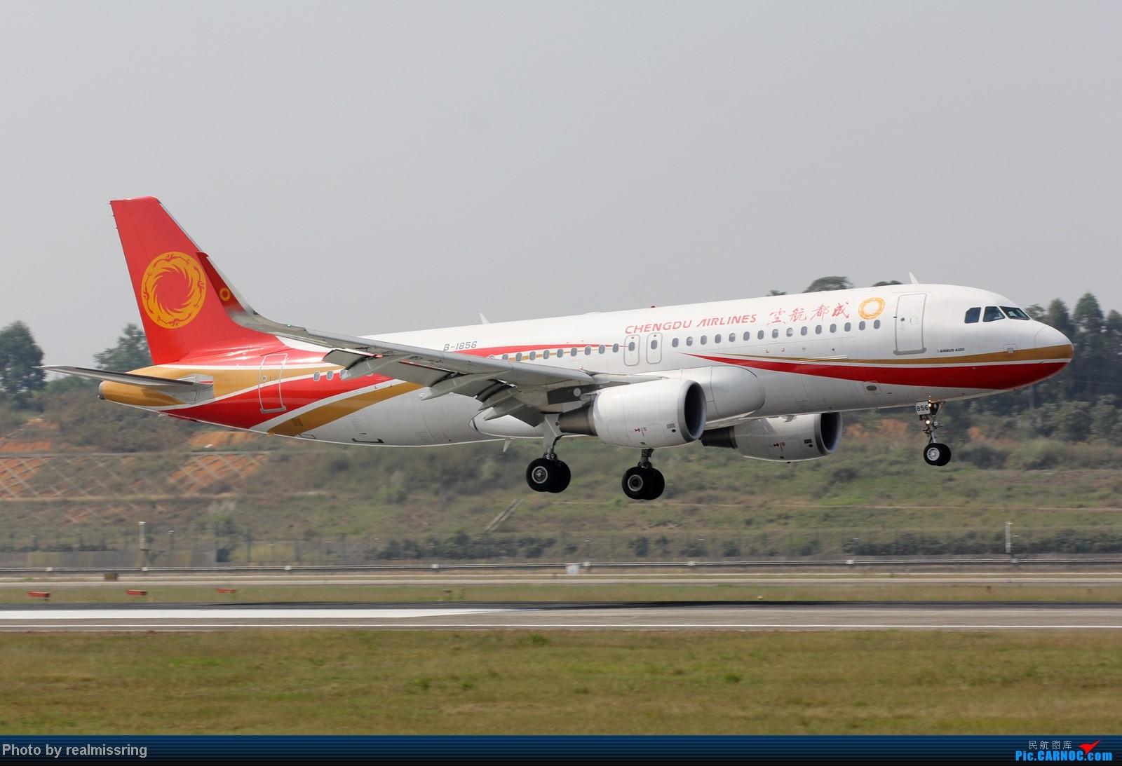 Re:[原创]CARNOC成都空港缘分-国庆6号拍机之02R(小树林) AIRBUS A320-200 B-1856 中国成都双流机场