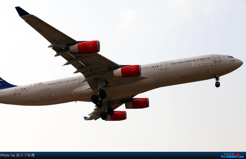 Re:[原创]北欧航空340客机 AIRBUS A340 LN-RKF 首都机场西湖园