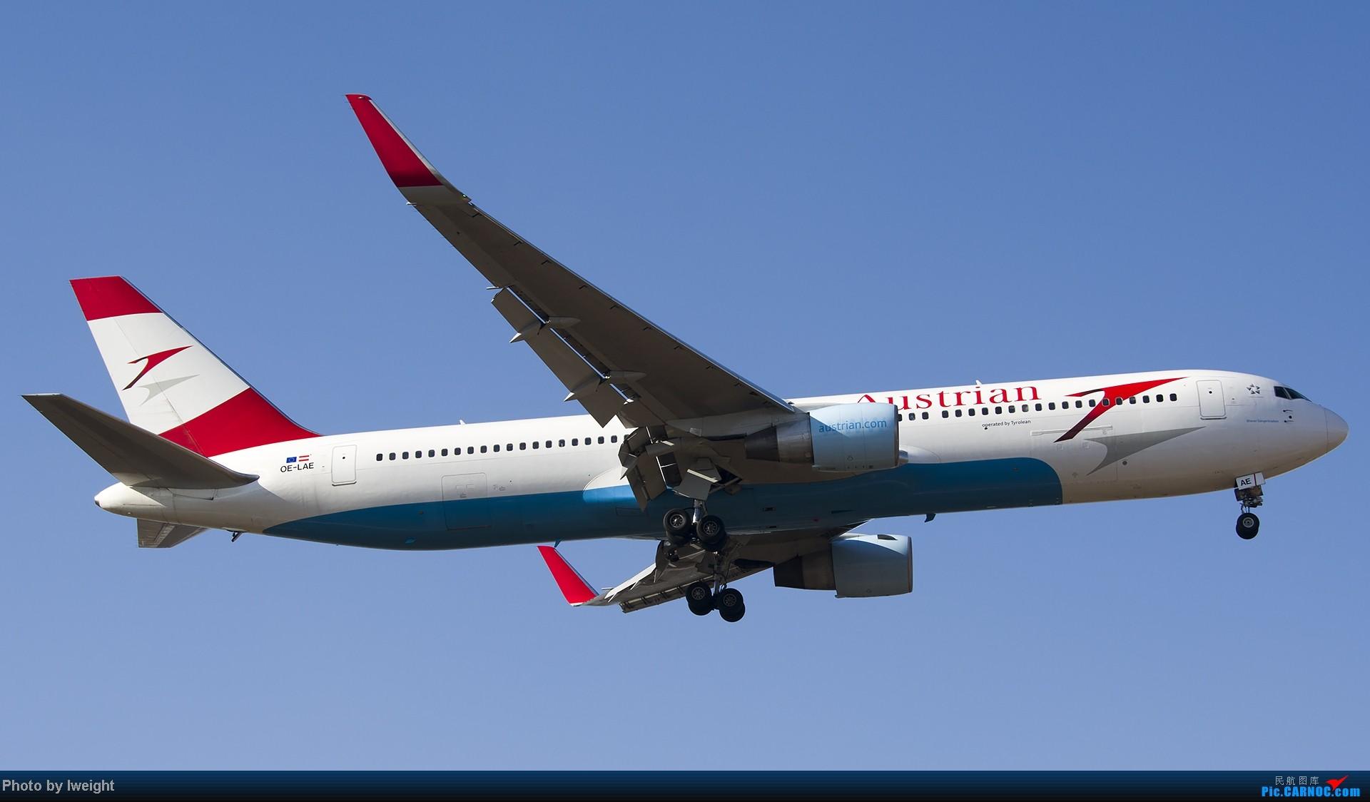 Re:[原创]抓住APEC蓝的尾巴,再拍上一组 BOEING 767-300ER OE-LAE 中国北京首都机场
