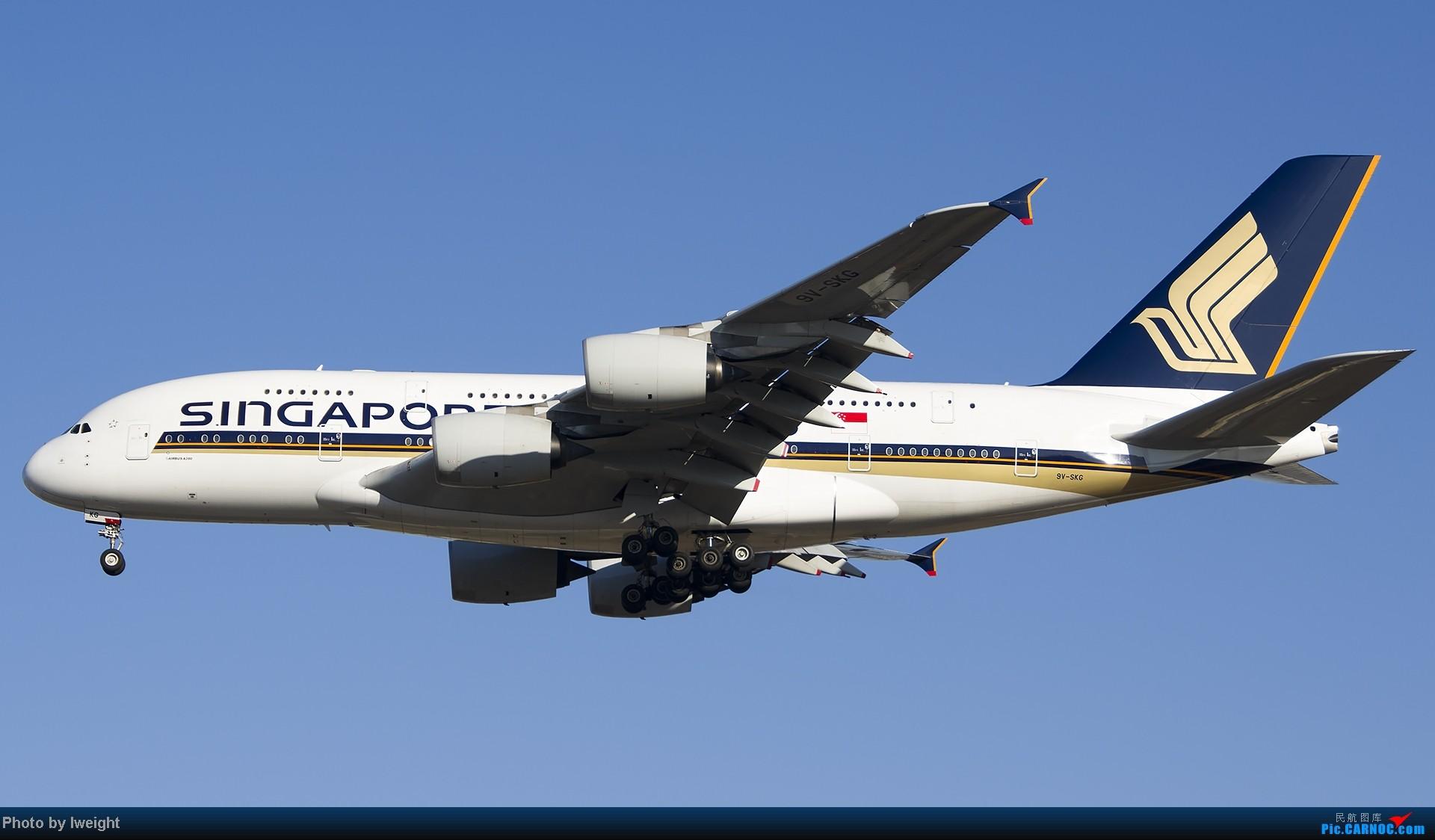 Re:[原创]抓住APEC蓝的尾巴,再拍上一组 AIRBUS A380-800 9V-SKG 中国北京首都机场