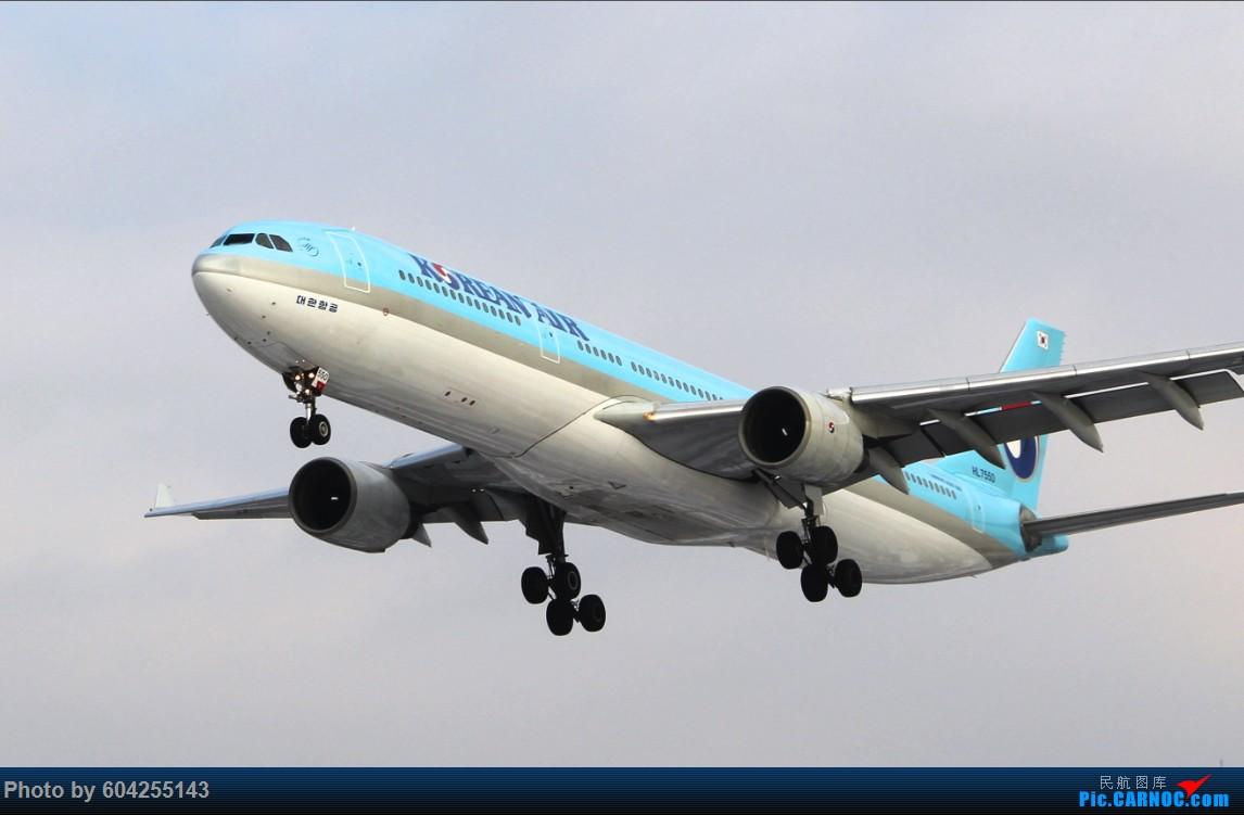 Re:[原创]大连28跑头大雪后拍机 AIRBUS A330-300