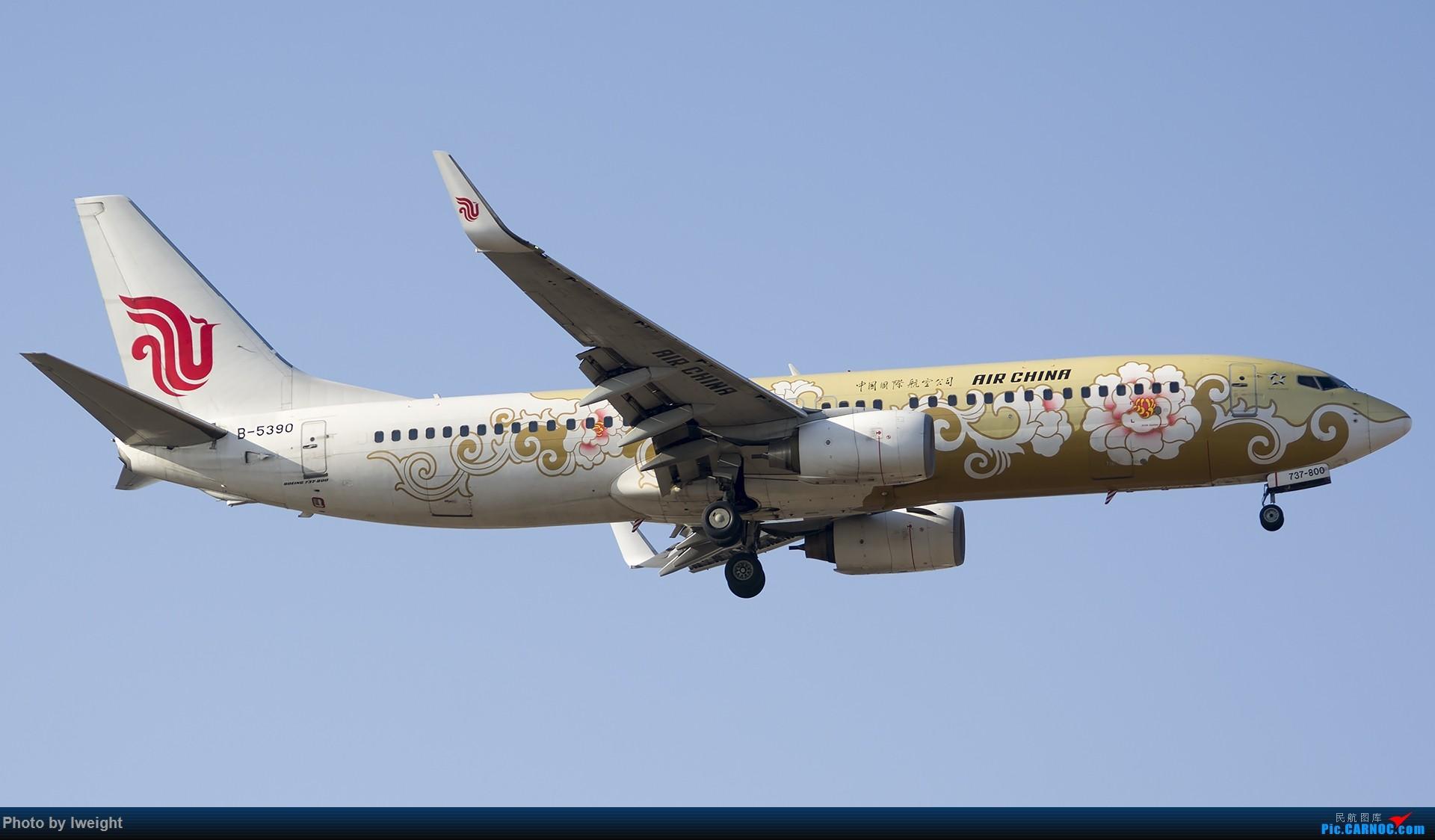 Re:[原创]庆祝升级777,发上今天在首都机场拍的所有飞机【2014-12-14】 BOEING 737-800 B-5390 中国北京首都国际机场