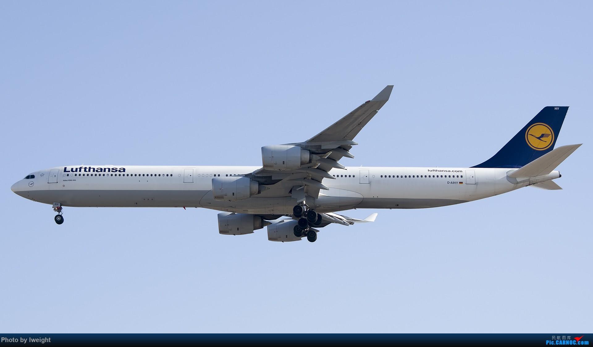 Re:[原创]庆祝升级777,发上今天在首都机场拍的所有飞机【2014-12-14】 AIRBUS A340-600 D-AIHY 中国北京首都国际机场